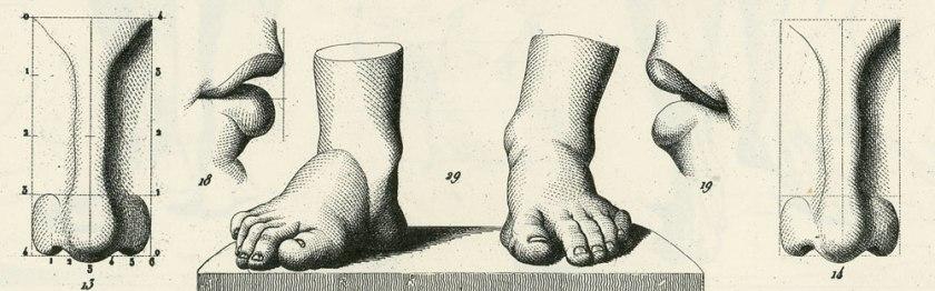Illustrations1