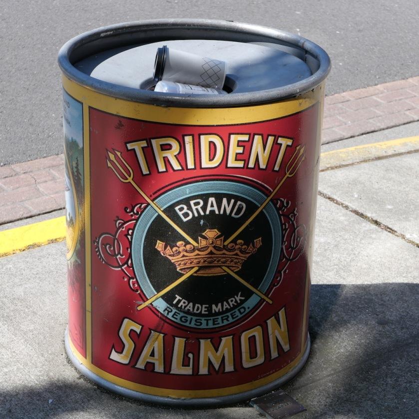 Trident salmon